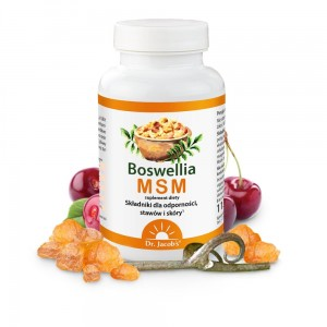 Dr Jacobs  Boswellia MSM (90 tab)